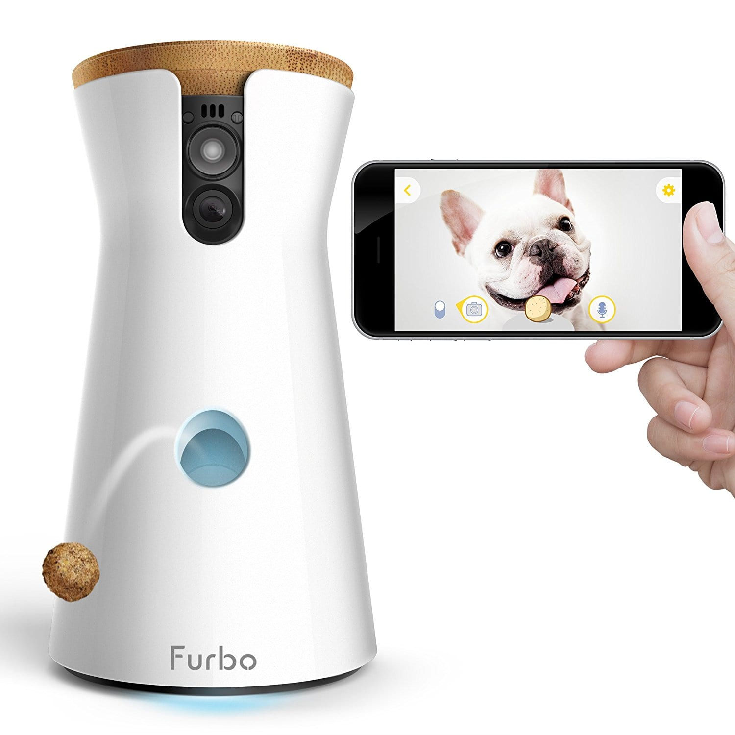 Best Dog Automatic Treat Dispenser